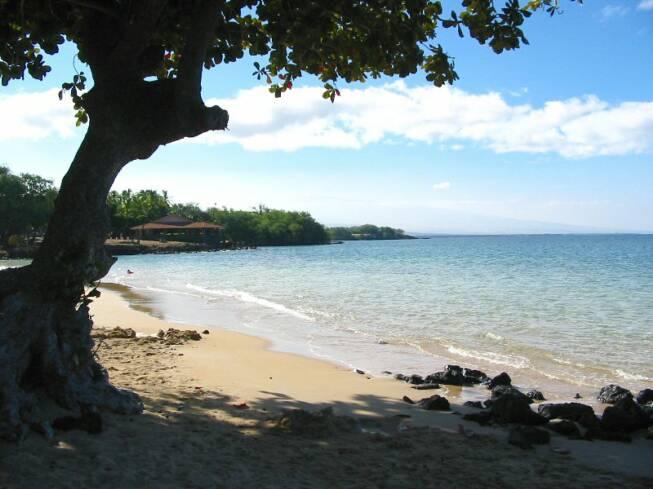 Kona Oceanfront Rental Big Island Condos For Rent
